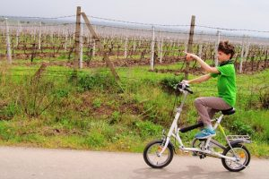 The-wine-route-by-bike-2-days-6